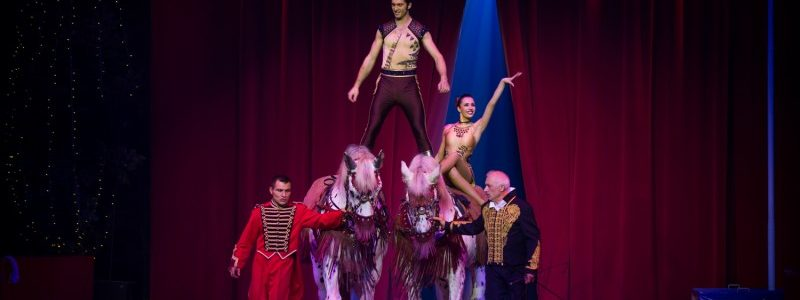 Circus act costumes for Merrylu and Josef Richter Jr.